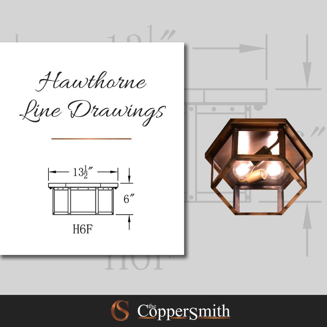 Hawthorne Line Drawing